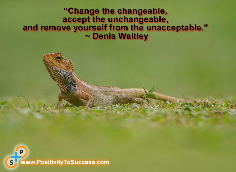 """""""Change the changeable, accept the unchangeable, and remove yourself from the unacceptable."""" ~ Denis Waitley"""