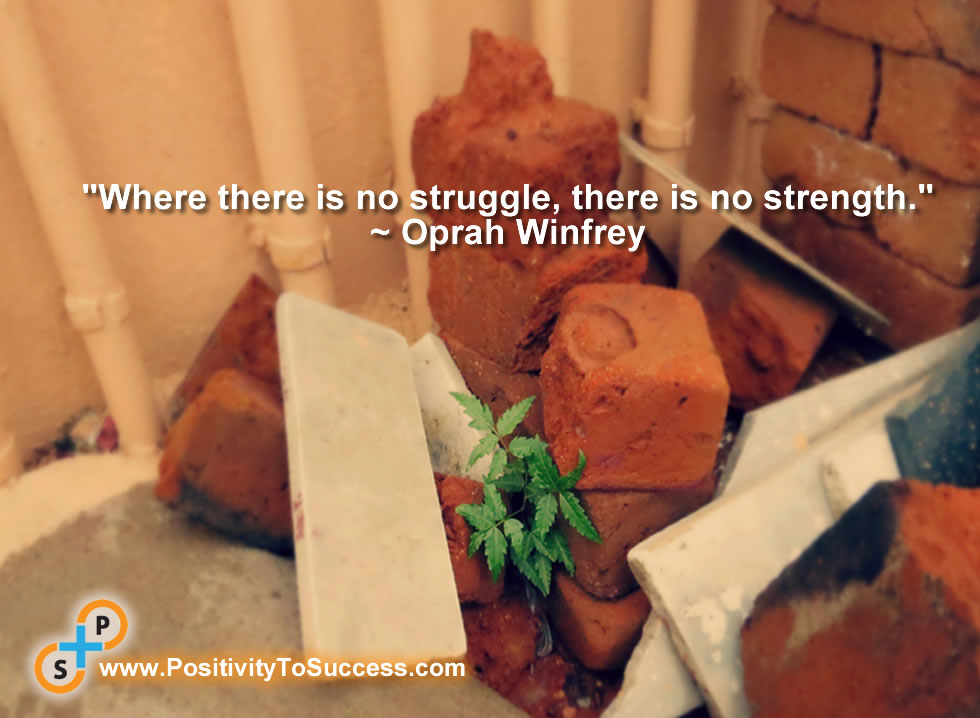 """""""Where there is no struggle, there is no strength."""" ~ Oprah Winfrey"""