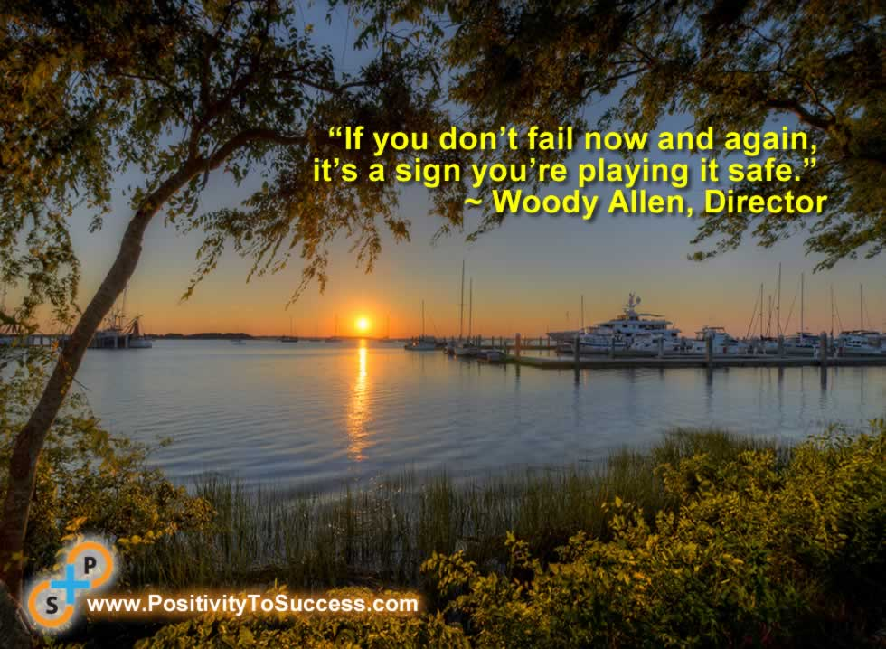 """If you don't fail now and again, it's a sign you're playing it safe."" ~ Woody Allen, Director"