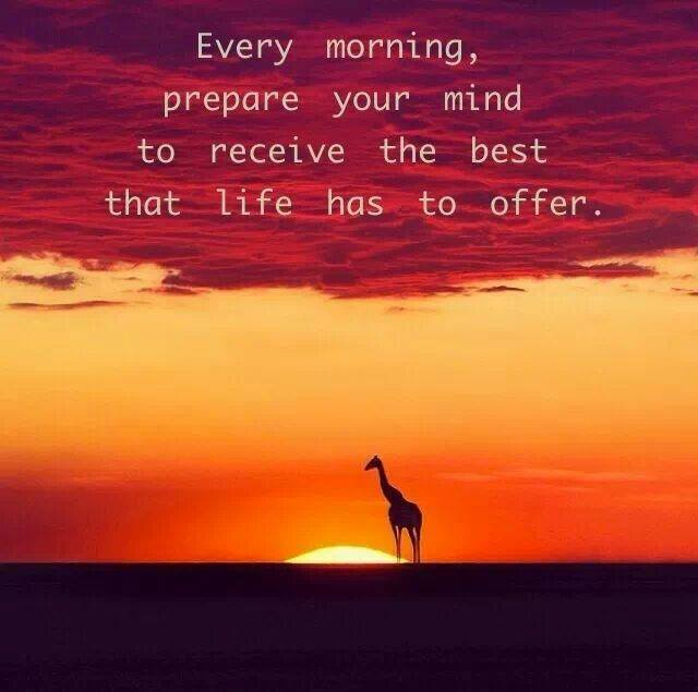 every morning prepare your mind to receive the best that life has to offer