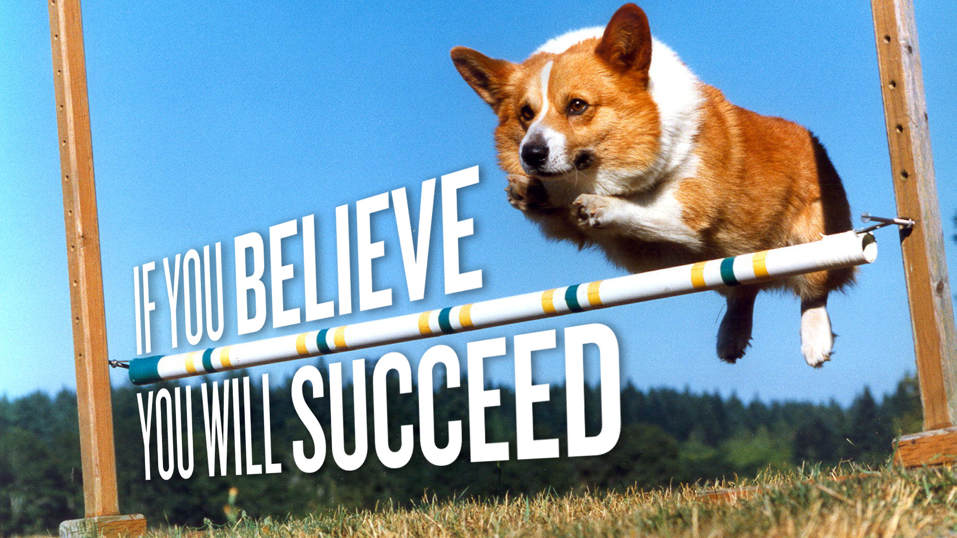 if you believe, you will succeed