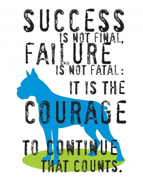 Success Is Not Final, Failure Is Not Fatal; It Is The Courage To Continue That Counts