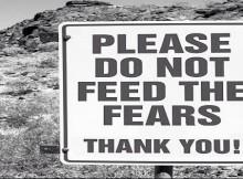 feed the fear